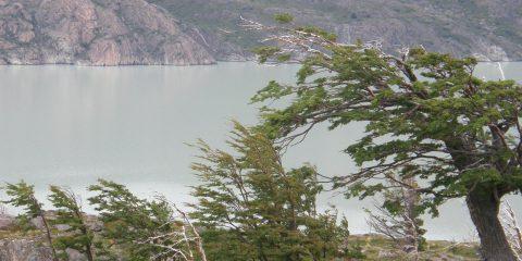 Torres del Paine – Jour 5 – Refugio Lago Pehoe